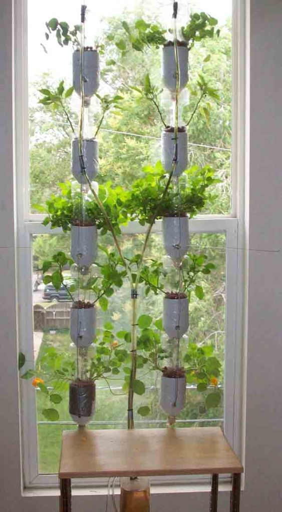 windowfarm1-ecoinvento