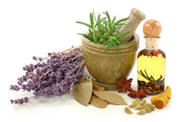 consejos-de-plantas-medicinales